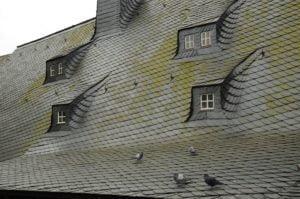Das Dach eines Hauses ist Gemeinschaftseigentum. Eine vielleicht nötige Dachsanierung wird daher über die Instandhaltungsrücklage für das Gemeinschaftseigentum angespart